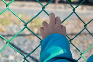 フェンスを掴む手の写真素材 [FYI00429961]