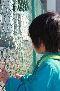 フェンスを掴む子どもの写真素材 [FYI00429978]