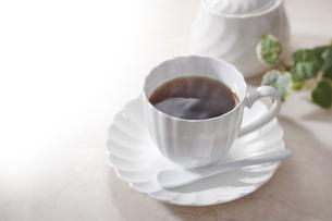 コーヒーの写真素材 [FYI00429992]