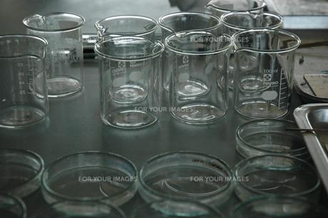 小学校の理科室01の写真素材 [FYI00430172]
