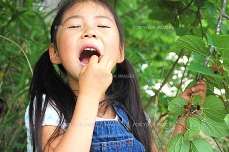 木の実を食べる、女の子の素材 [FYI00430348]
