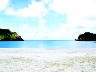真っ白な海岸と青い海の素材 [FYI00430399]