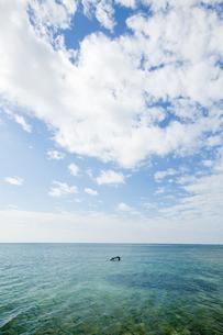 糸満の海の写真素材 [FYI00430592]