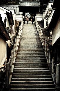 竹原市重要伝統的建造物群保存地区の写真素材 [FYI00430603]