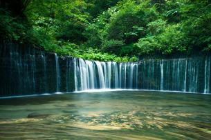 白糸の滝(軽井沢)の写真素材 [FYI00430607]