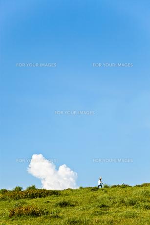 夏空の写真素材 [FYI00430621]