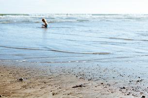 海岸の少女の写真素材 [FYI00430634]
