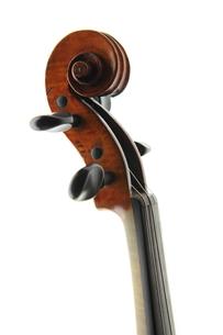 弦楽器の写真素材 [FYI00430730]