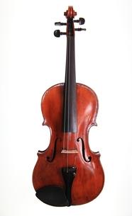 弦楽器の写真素材 [FYI00430743]