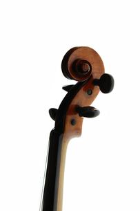 弦楽器の写真素材 [FYI00430777]