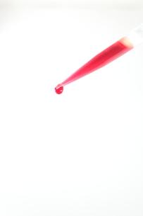 一滴の血の写真素材 [FYI00430811]