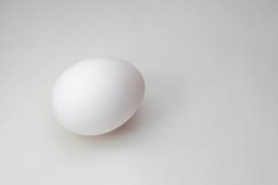 卵の写真素材 [FYI00430816]