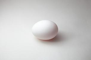卵の写真素材 [FYI00430829]