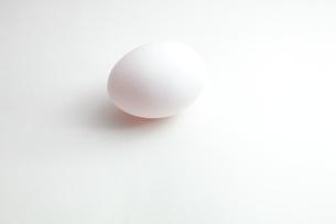 卵の写真素材 [FYI00430830]