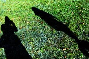 影の写真素材 [FYI00431656]