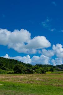 田舎の情景の写真素材 [FYI00431828]