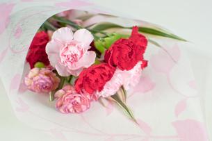 カーネーションの花束の写真素材 [FYI00431886]
