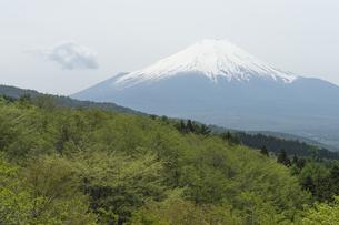 二十曲峠からの富士山の素材 [FYI00432579]