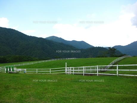 牧場と柵の写真素材 [FYI00432605]