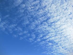 羊雲の写真素材 [FYI00432617]