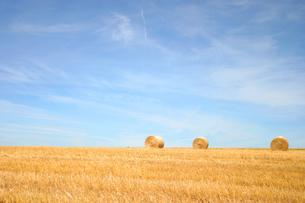ドイツの干草ロールの写真素材 [FYI00432763]