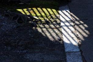庭園の素材 [FYI00432858]
