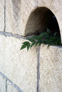 石塀点描の素材 [FYI00432905]