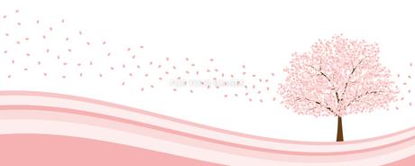 桜イメージの写真素材 [FYI00432968]