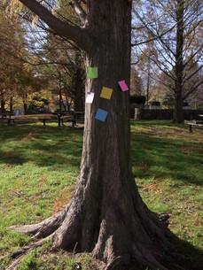 木にメモの写真素材 [FYI00433135]