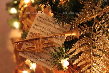クリスマスツリーの写真素材 [FYI00433163]
