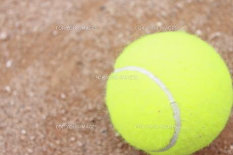 テニスポールの写真素材 [FYI00433252]