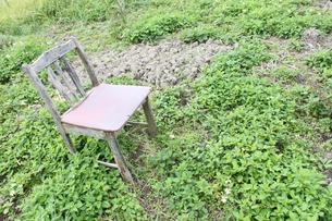 椅子の素材 [FYI00433868]
