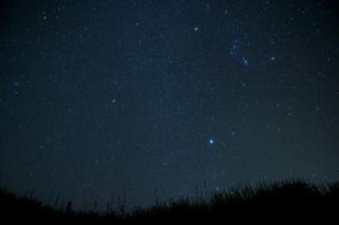 見上げた星空(オリオン座)の写真素材 [FYI00434597]