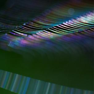 蜘蛛の糸の写真素材 [FYI00434730]