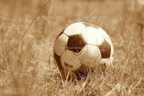 草原のサッカーボールの写真素材 [FYI00434864]
