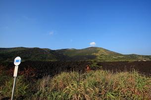 三宅島、溶岩原とバス停の写真素材 [FYI00434928]