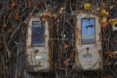 廃墟ビルの電気メーターと蔦の写真素材 [FYI00434952]