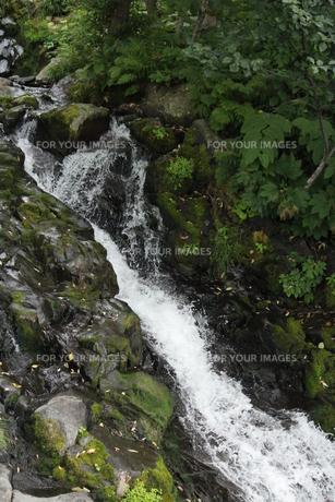 岩場の流水の素材 [FYI00435282]