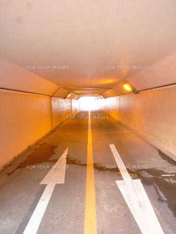 自転車/歩行者専用通路の写真素材 [FYI00435444]