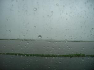田舎の雨の日の写真素材 [FYI00435452]