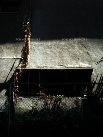 壁にあたる光の素材 [FYI00435457]