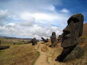 イースター島のラノ・ララクにある複数体のモアイの写真素材 [FYI00435484]