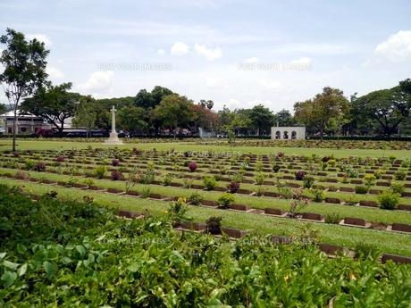 タイのカンチャナブリーにある連合軍共同墓地の写真素材 [FYI00435503]