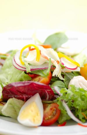 サラダの写真素材 [FYI00435952]