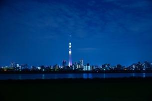 スカイツリーと東京タワーの写真素材 [FYI00436011]