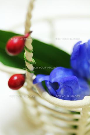 白いかごとリンドウの花の素材 [FYI00436086]
