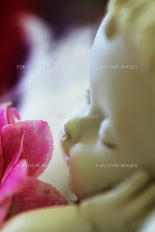 天使とピンクの花の素材 [FYI00436090]
