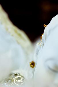 天使の置物の寝顔の素材 [FYI00436092]