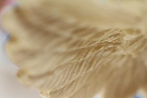 天使の羽の素材 [FYI00436106]