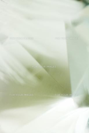鏡と羽の素材 [FYI00436110]